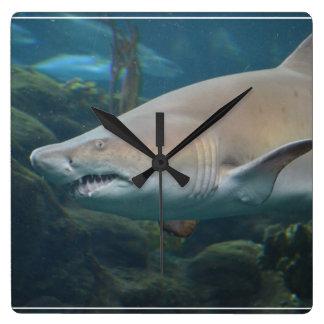 Gran tiburón blanco asustadizo reloj cuadrado