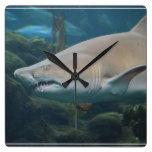 Gran tiburón blanco asustadizo relojes