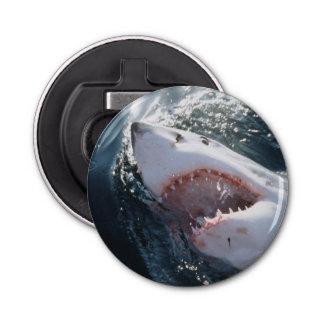 Gran tiburón blanco en el mar abrebotellas redondo
