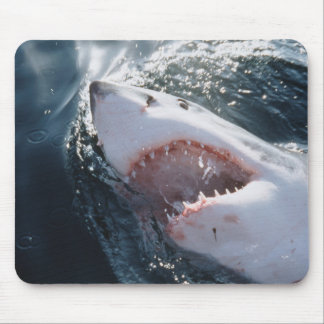 Gran tiburón blanco en el mar tapetes de raton