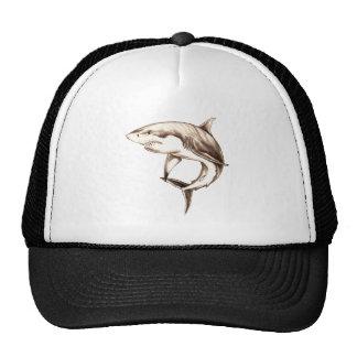 gran tiburón blanco gorro