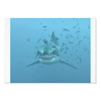 """Gran tiburón blanco Isla Guadalupe Invitación 5"""" X 7"""""""