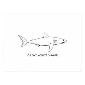 Gran tiburón blanco (línea arte) postales