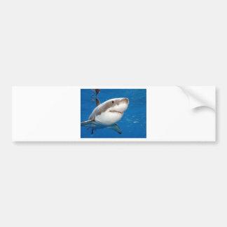 Gran tiburón blanco pegatina para auto