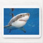 Gran tiburón blanco tapetes de raton