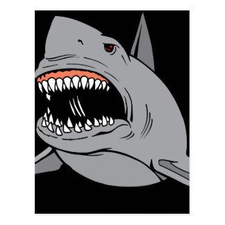 Gran tiburón blanco postal