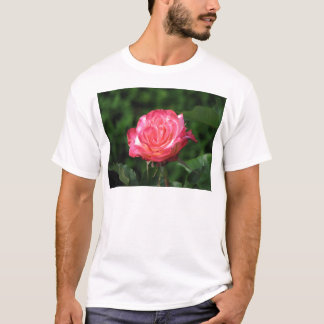 Granada 230 T-Shirt