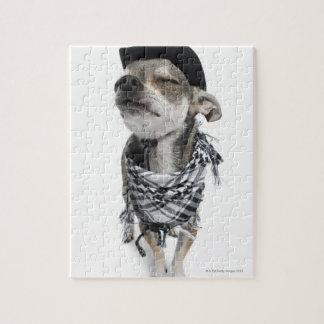 Granangular de una chihuahua con el suyo observa rompecabezas con fotos