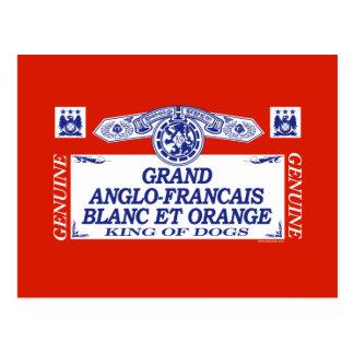 Grand Anglo-Francais Blanc Et Orange Postcard