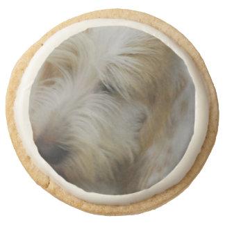 Grand Basset Dog Round Premium Shortbread Cookie