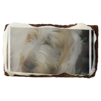 Grand Basset Dog Rectangular Brownie