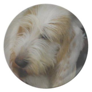Grand Basset Dog Plate