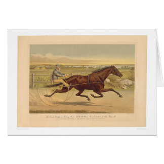 Grand California Trotting Mare Sunol (0652A) Card