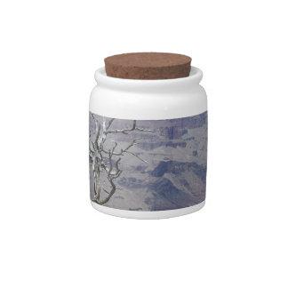 Grand Canyon Arizona Candy Jar