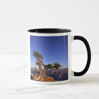 Grand Canyon, Arizona, USA Mug