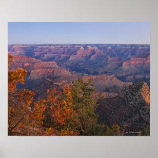 Grand Canyon at Sunrise Poster