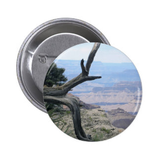Grand Canyon branch pin