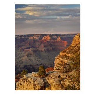 Grand Canyon from the south rim at sunset, 2 Postcard