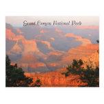 grand canyon greetings post card