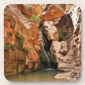 Grand Canyon National Park, Arizona Beverage Coaster