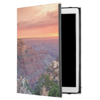 Grand Canyon National Park, Arizona iPad Pro Case