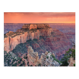 Grand Canyon National Park, Arizona Postcard