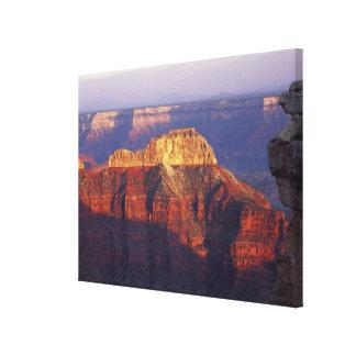 Grand Canyon National Park, Arizona, USA. Stretched Canvas Print