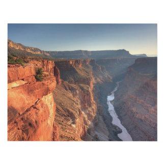 Grand Canyon National Park, USA Panel Wall Art