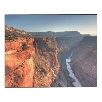 Grand Canyon National Park, USA Wood Wall Art