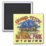 Grand Canyon National Park, Wyoming Fridge Magnet