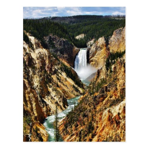Grand Canyon Of The Yellowstone Park Looking Towar Postcard