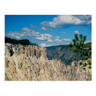 Grand Canyon of Yellowstone Postcard