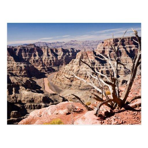 Grand Canyon Postcards