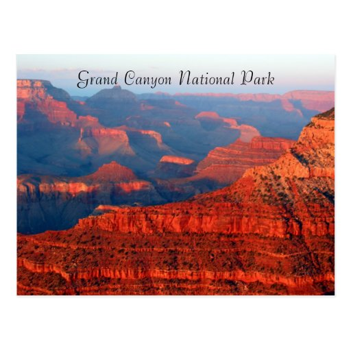 grand canyon red greetings postcard