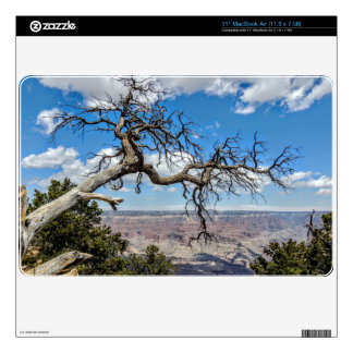 "Grand Canyon Skins For 11"" MacBook Air"