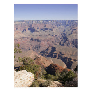 Grand Canyon South Rim Postcard