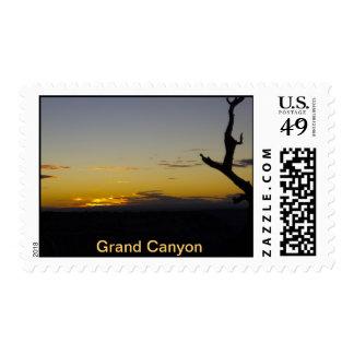 Grand Canyon Stamp 2