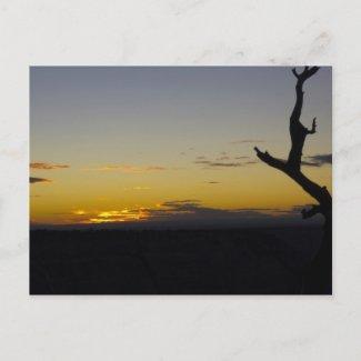 Grand Canyon Sunset Postcard postcard