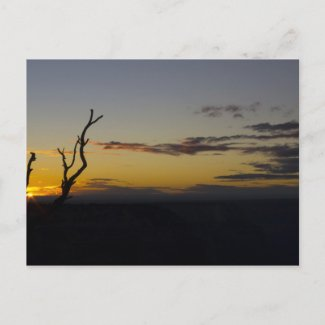 Grand Canyon Sunset Postcard 2 postcard