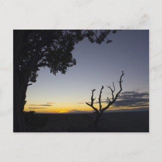 Grand Canyon Sunset Postcard 3 postcard