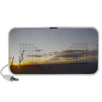 Grand Canyon Sunset Speaker