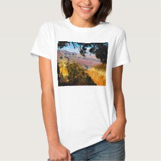 Grand Canyon T Shirt