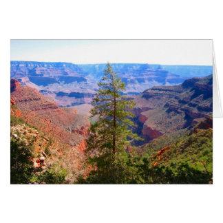 grand canyon tree greeting card