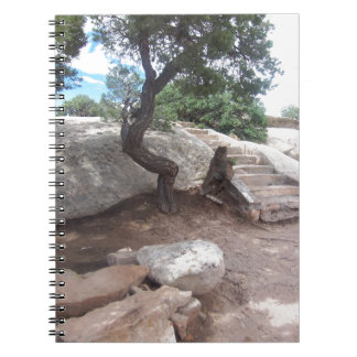 Grand Canyon Tree Journal