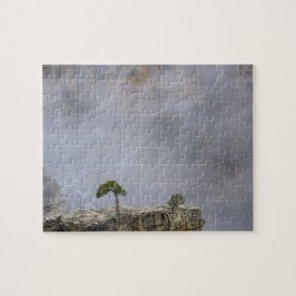 Grand Canyon Tree Puzzle puzzle