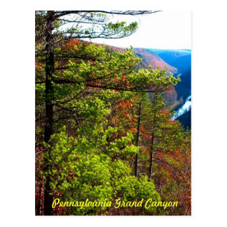 Grand Canyon , Wellsboro Pa Post Cards