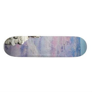 Grand Canyons Cliffs Tourists Skateboard