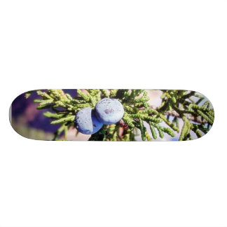 Grand Canyons Junipers Berry Berries Skate Boards