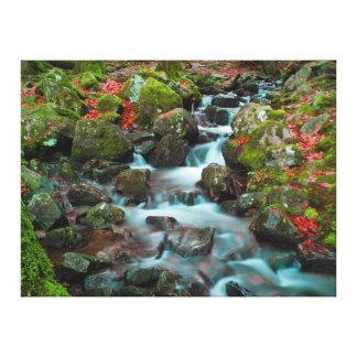 Grand Cascades Tendons Waterfall Canvas Print