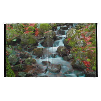 Grand Cascades Tendons Waterfall iPad Folio Covers
